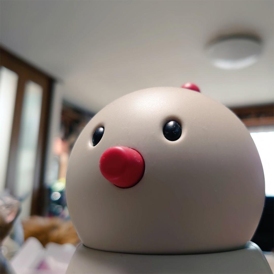 fumihiko abeさん家のぼっこ